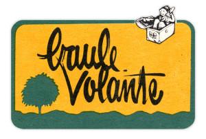 Logo Baule Volante - 1987