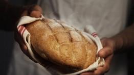 pasta madre pane