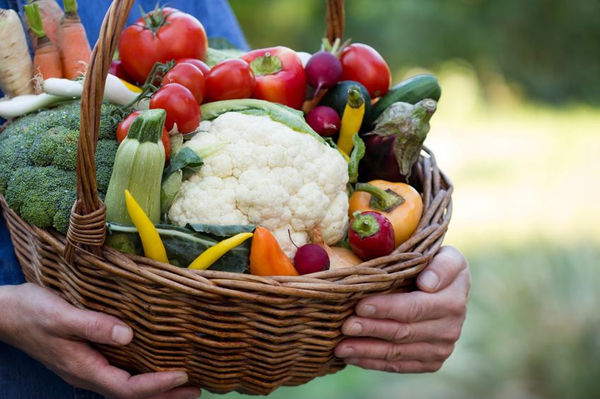 pesticidi-salute-agricoltura-biologica