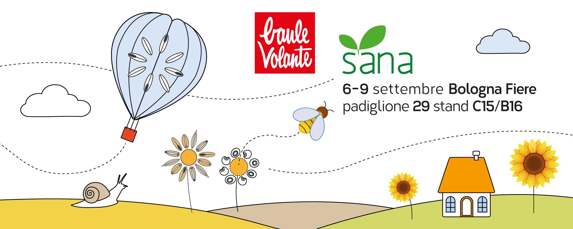SANA 2019 slide